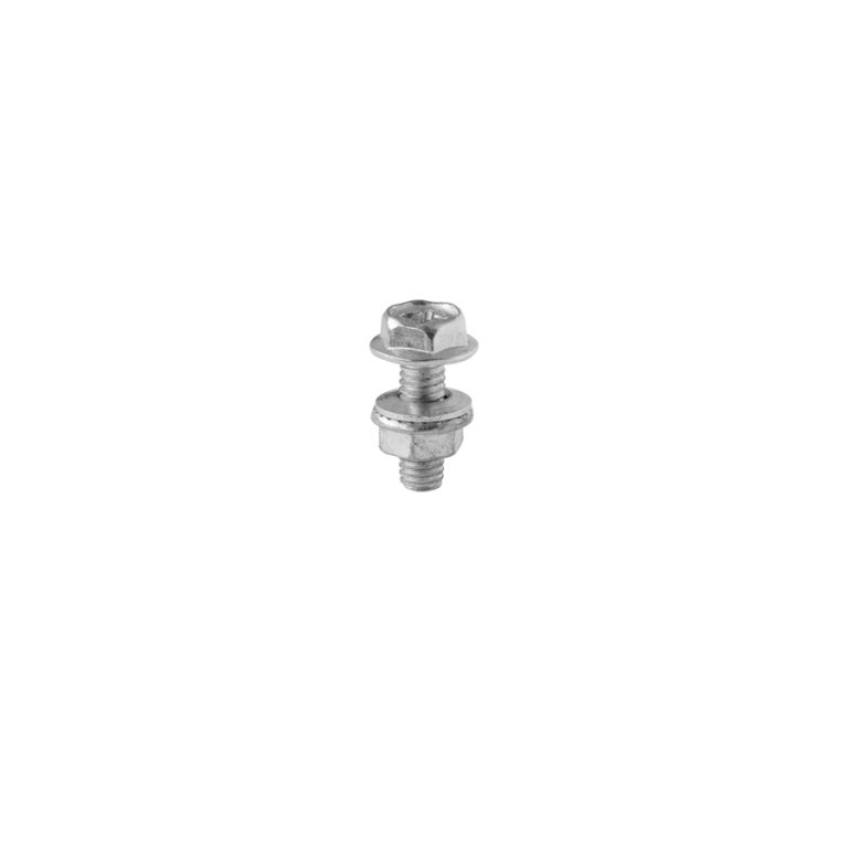 FLANGED SCREW